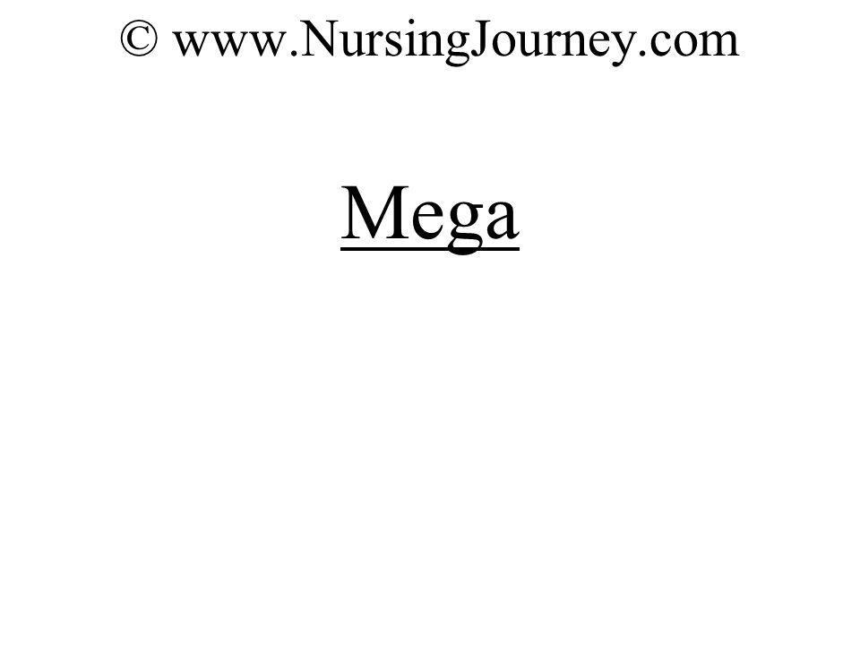 © www.NursingJourney.com Mega