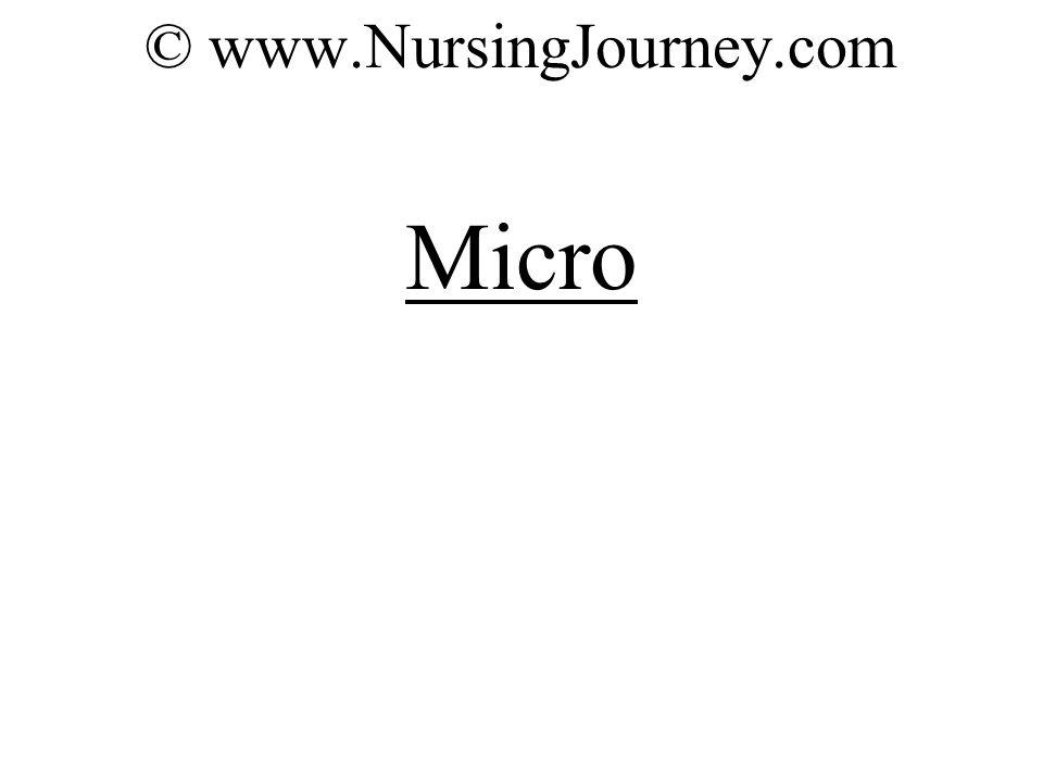 © www.NursingJourney.com Micro