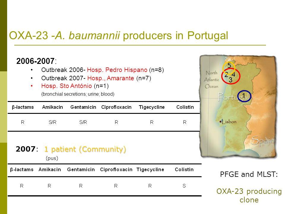 2006-2007: Outbreak 2006- Hosp. Pedro Hispano (n=8) Outbreak 2007- Hosp., Amarante (n=7) Hosp. Sto António (n=1) (bronchial secretions; urine; blood)