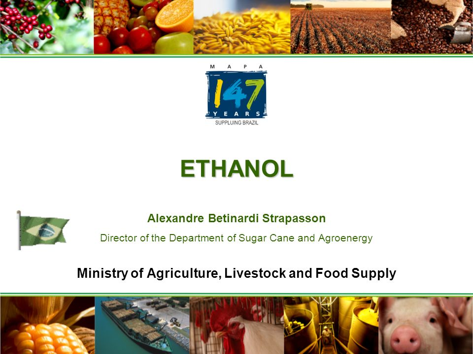 ETHANOL ETHANOL Alexandre Betinardi Strapasson Director of the Department of Sugar Cane and Agroenergy Ministry of Agriculture, Livestock and Food Supply