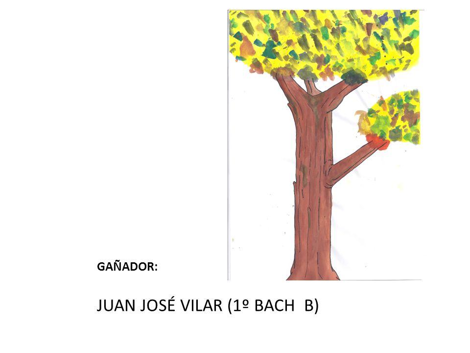 GAÑADOR: JUAN JOSÉ VILAR (1º BACH B)