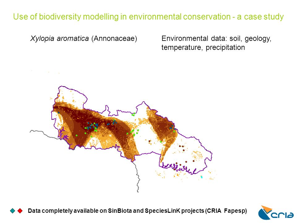 Use of biodiversity modelling in environmental conservation - a case study Data completely available on SinBiota and SpeciesLinK projects (CRIA Fapesp) Xylopia aromatica (Annonaceae)Environmental data: soil, geology, temperature, precipitation