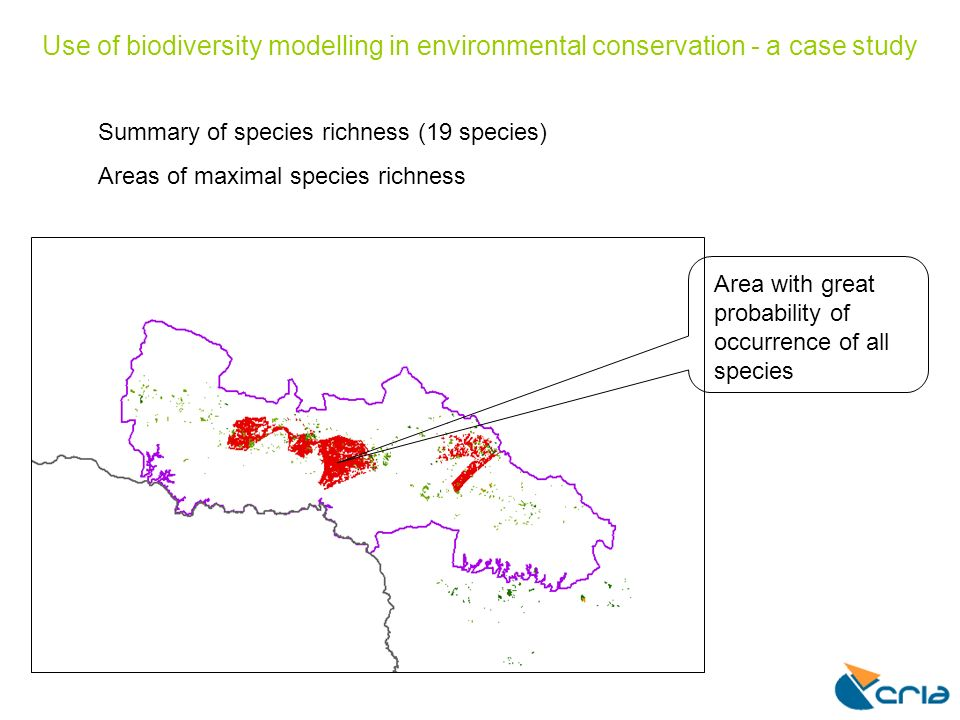 Use of biodiversity modelling in environmental conservation - a case study Summary of species richness (19 species) Areas of maximal species richness Area with great probability of occurrence of all species