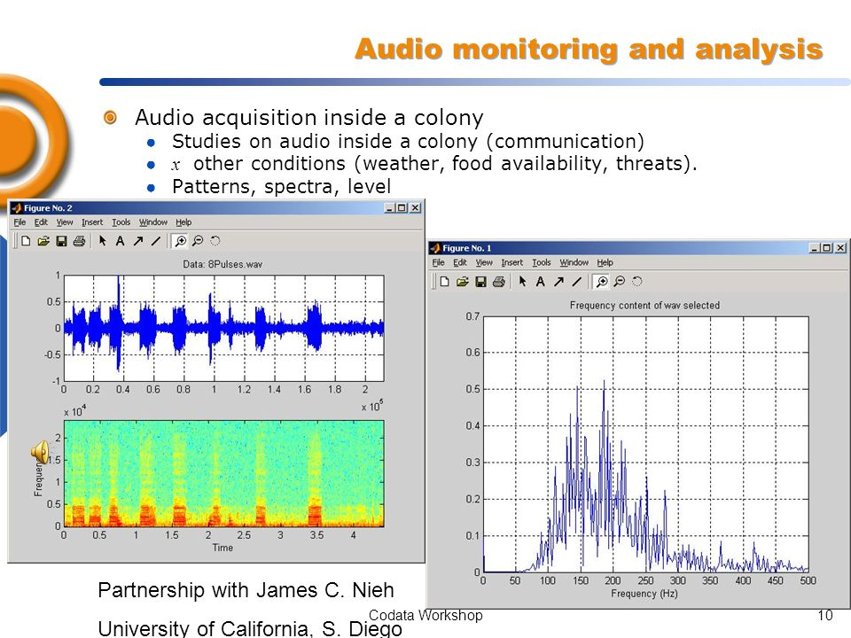 Codata Workshop9 Real time video and sound captured on the beehive BBB: Real Time Video Streaming