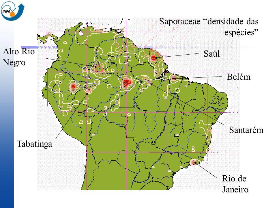 Sapotaceae densidade das espécies Saül Belém Tabatinga Rio de Janeiro Santarém Alto Rio Negro