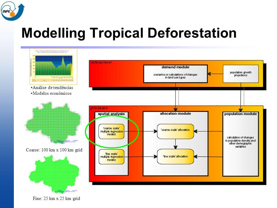 Modelling Tropical Deforestation Fine: 25 km x 25 km grid Coarse: 100 km x 100 km grid Análise de tendências Modelos econômicos