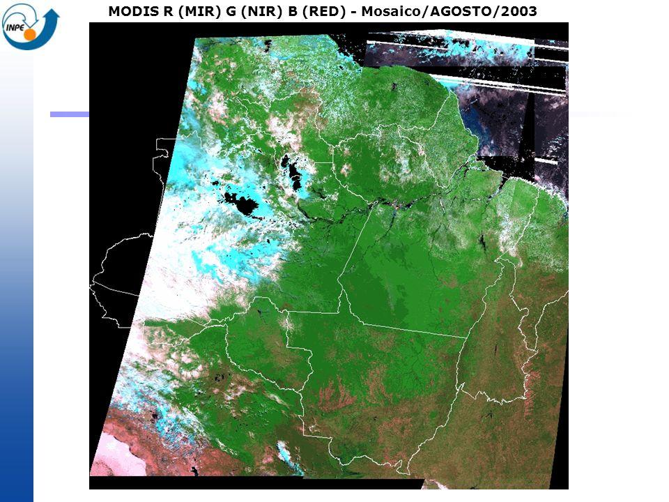 MODIS R (MIR) G (NIR) B (RED) - Mosaico/AGOSTO/2003
