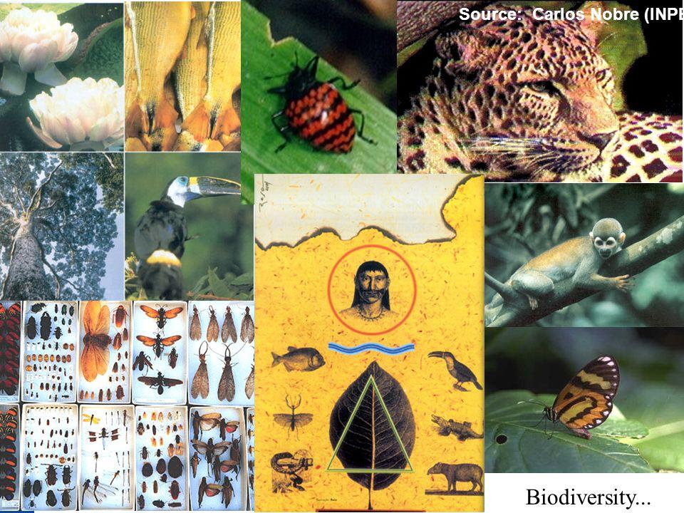 Biodiversity... Source: Carlos Nobre (INPE)