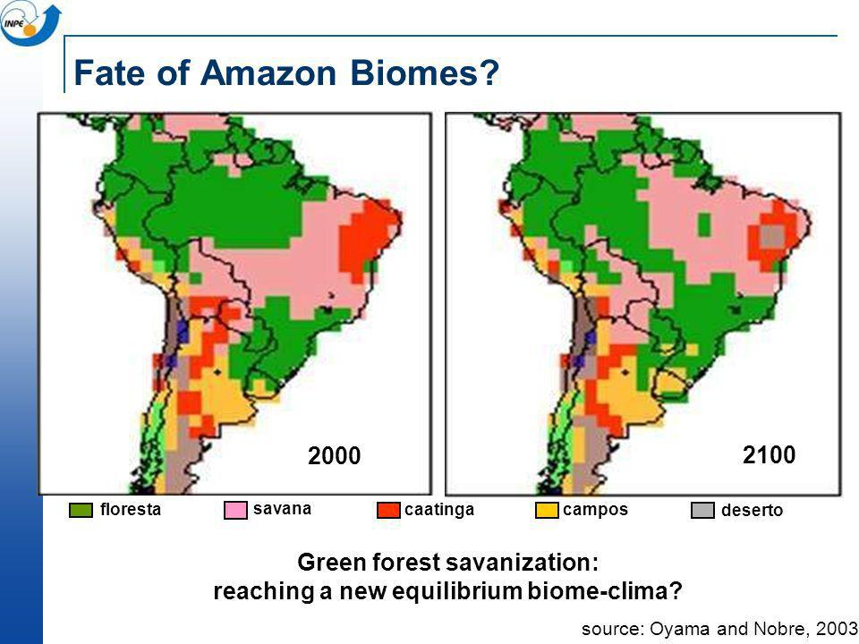 Fate of Amazon Biomes? source: Oyama and Nobre, 2003 Green forest savanization: reaching a new equilibrium biome-clima? floresta savana caatinga campo