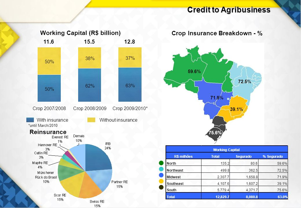 18 Without insuranceWith insurance Crop Insurance Breakdown - % Working Capital (R$ billion) 59.6% 72.5% 71.9% 39.1% 75.6% *until March/2010 Reinsurance Credit to Agribusiness 11.615.512.8 63% 62% 50% 37% 38% 50% Crop 2007/2008Crop 2008/2009Crop 2009/2010*