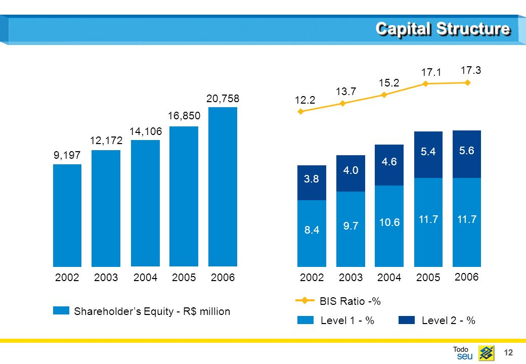12 Capital Structure Shareholders Equity - R$ million Level 1 - % BIS Ratio -% 9,197 12,172 14,106 16,850 20, Level 2 - %