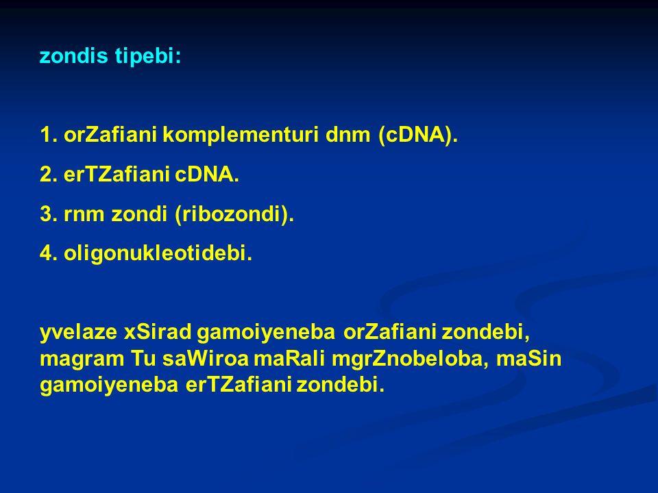 zondis tipebi: 1. orZafiani komplementuri dnm (cDNA). 2. erTZafiani cDNA. 3. rnm zondi (ribozondi). 4. oligonukleotidebi. yvelaze xSirad gamoiyeneba o