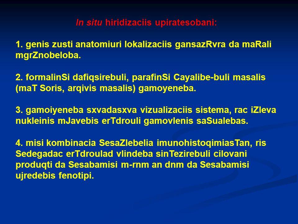 In situ hiridizaciis upiratesobani: 1. genis zusti anatomiuri lokalizaciis gansazRvra da maRali mgrZnobeloba. 2. formalinSi dafiqsirebuli, parafinSi C
