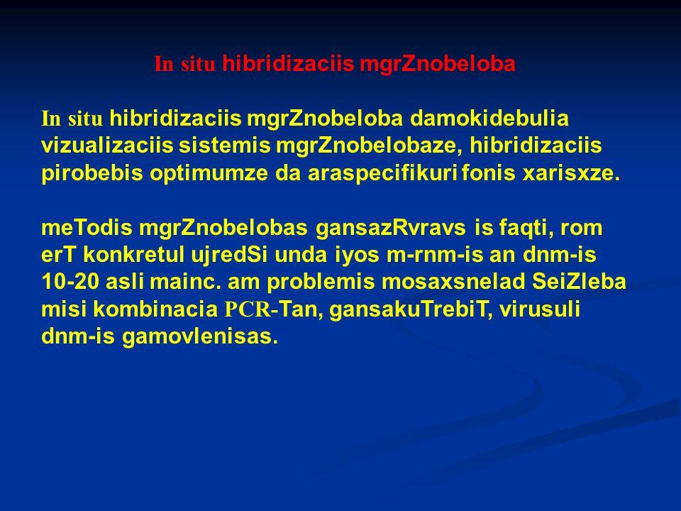 In situ hibridizaciis mgrZnobeloba In situ hibridizaciis mgrZnobeloba damokidebulia vizualizaciis sistemis mgrZnobelobaze, hibridizaciis pirobebis opt