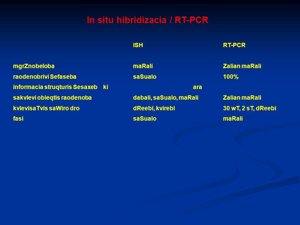 In situ hibridizacia / RT-PCR ISHRT-PCR mgrZnobelobamaRaliZalian maRali raodenobrivi SefasebasaSualo100% informacia struqturis Sesaxebkiara sakvlevi o