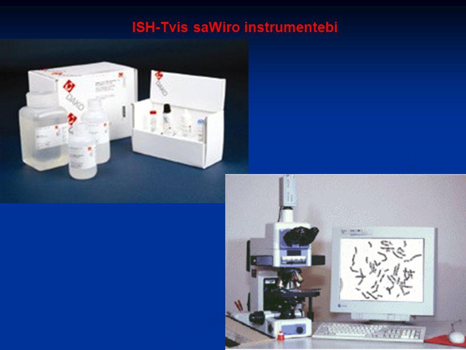 ISH-Tvis saWiro instrumentebi