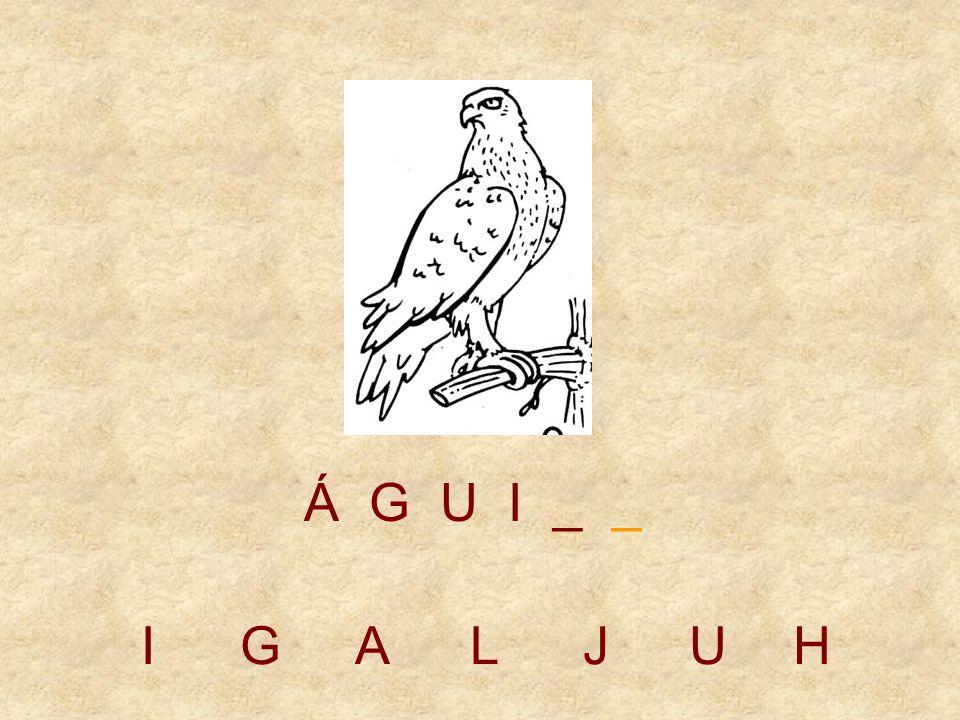 IGALJUH Á G U _ _ _