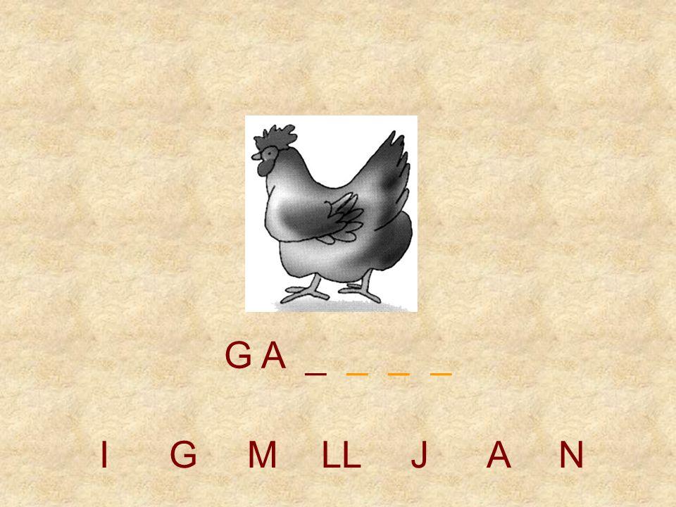 IGMLLJAN G _ _ _ _ _