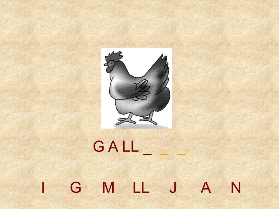 IGMLLJAN G A _ _ _ _