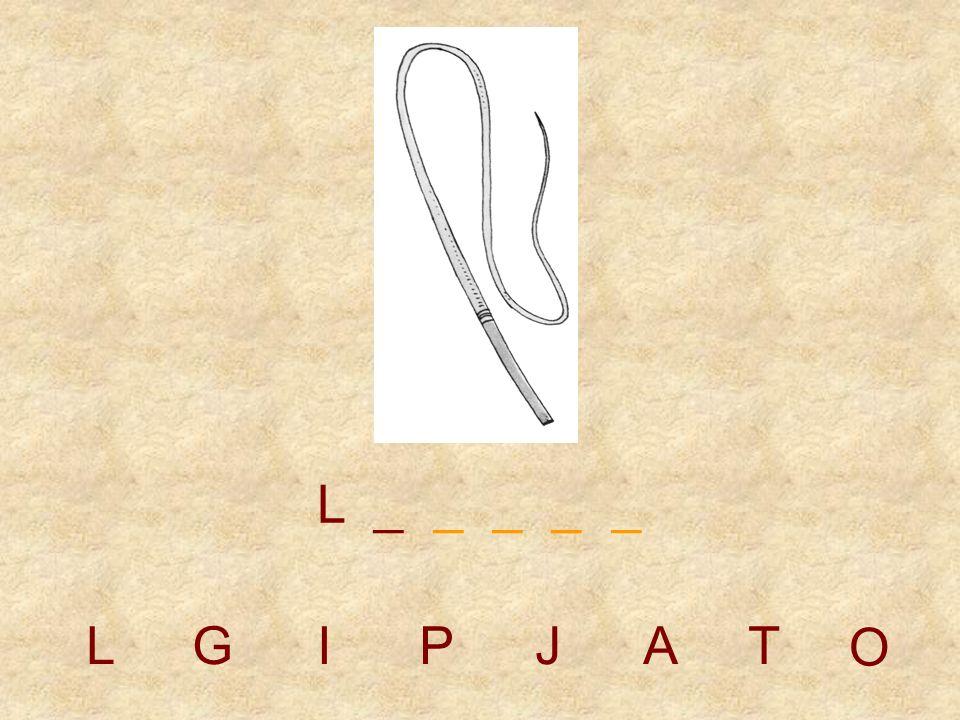 LGIPJAT _ _ _ O