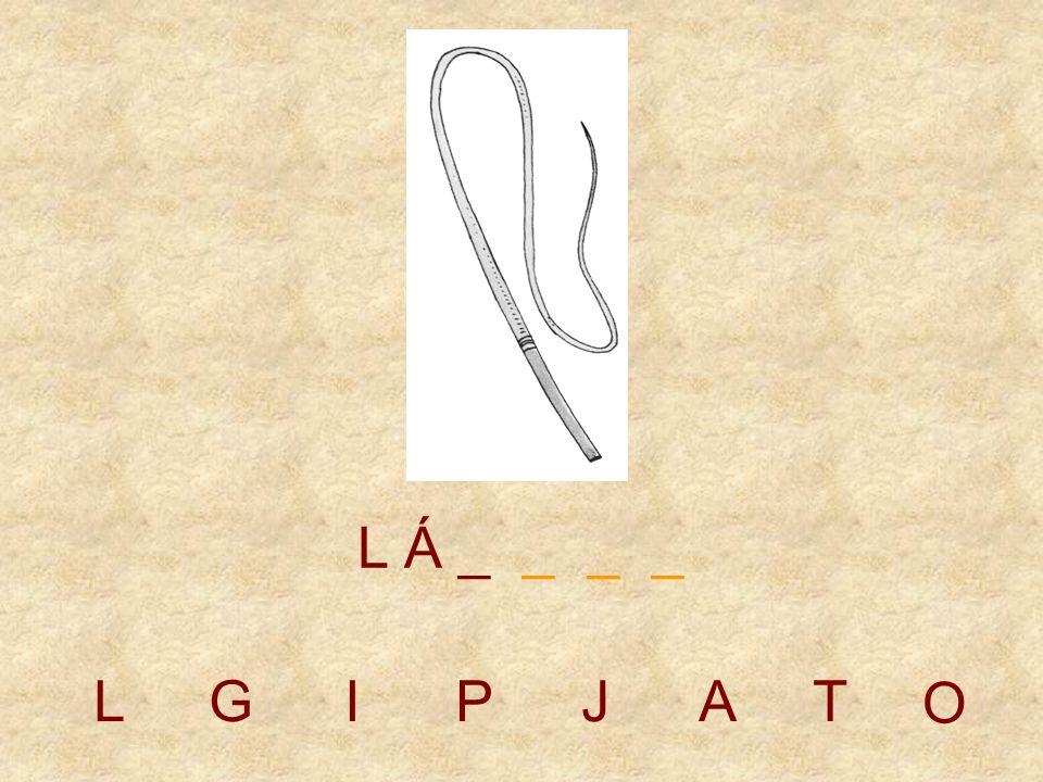 LGIPJAT L _ _ _ _ _ O