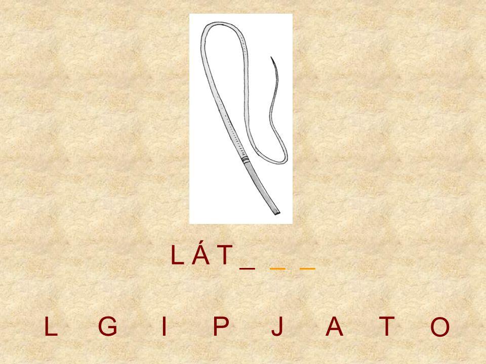 LGIPJT L Á _ _ _ _ O A