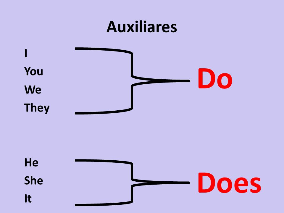Auxiliares I You We They He She It Does Do