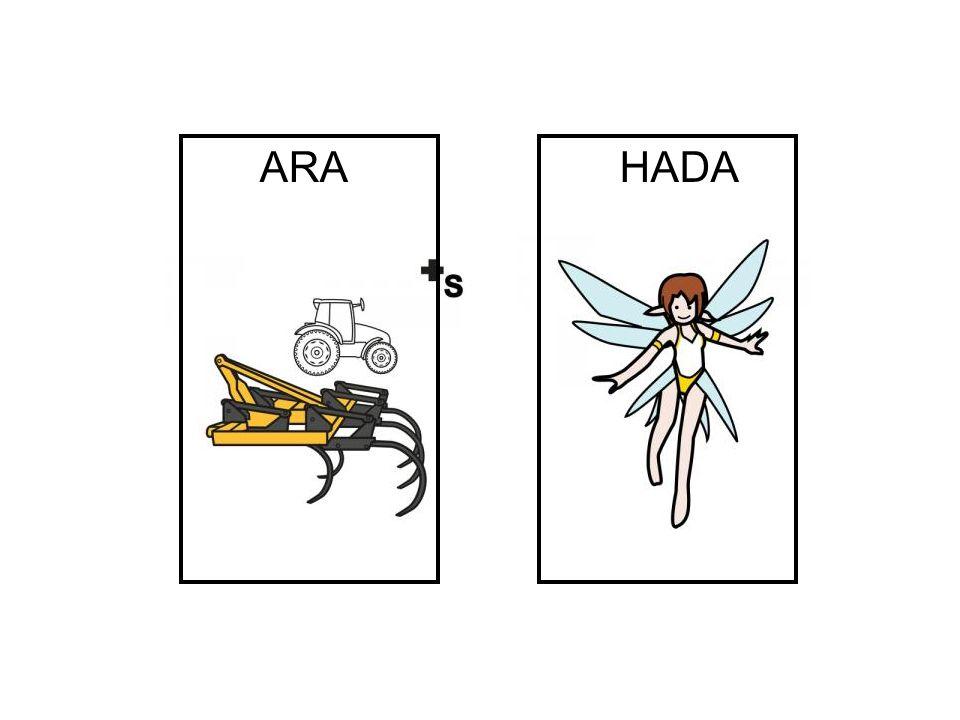 HADA ARA