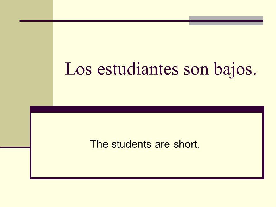 Los estudiantes son bajos. The students are short.