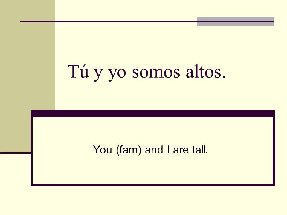 Tú y yo somos altos. You (fam) and I are tall.