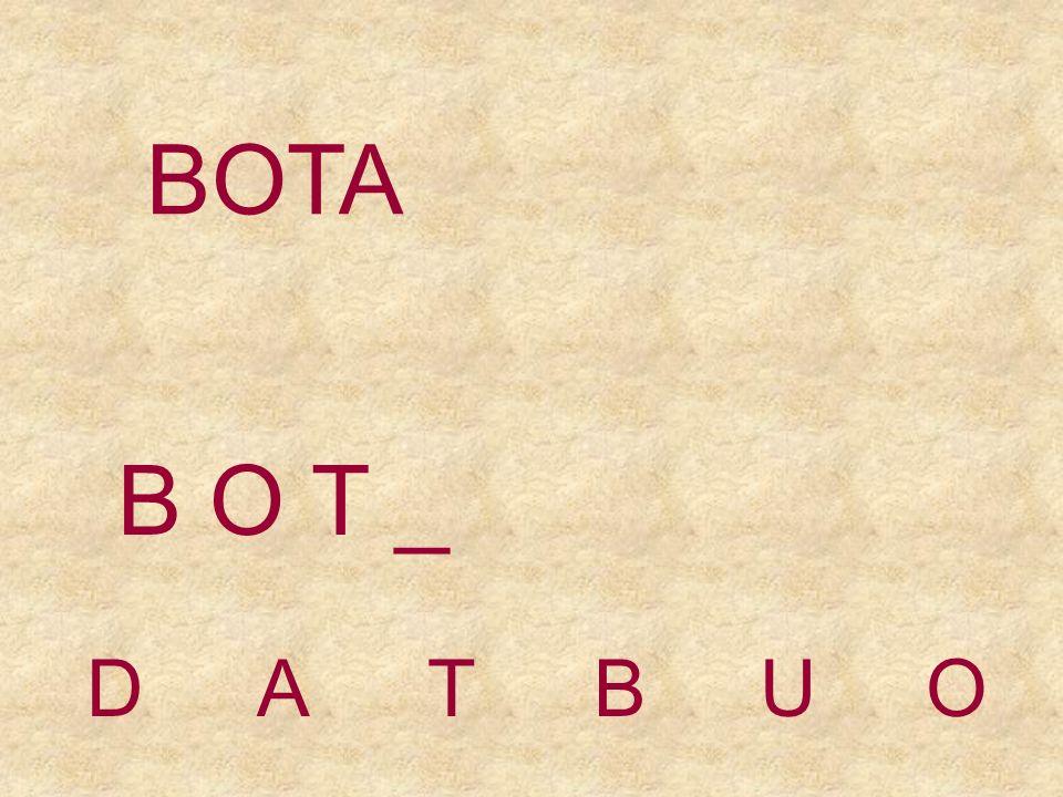 BOTA DATBUO B O _ _