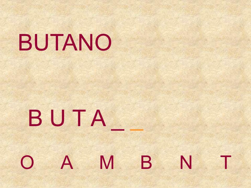 BUTANO OAMBNT B U T _ _ _