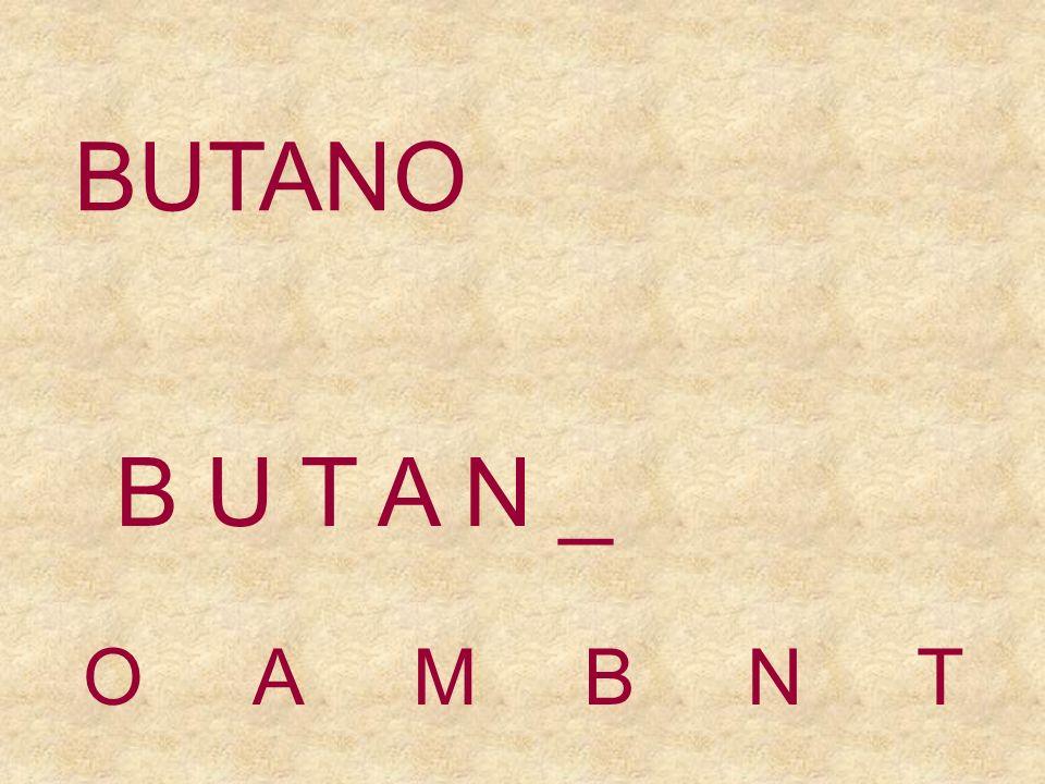 BUTANO OAMBNT B U T A _ _