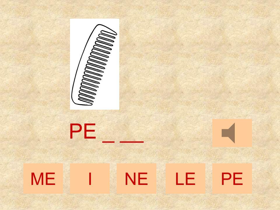 MEINELEPE