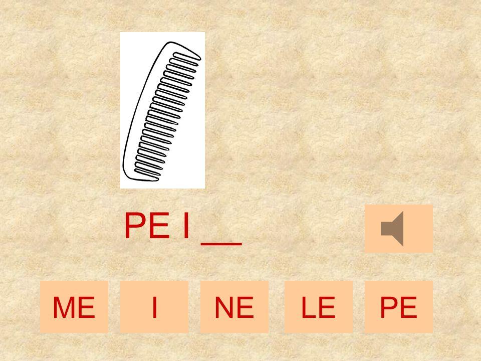 MEINELEPE PE _ __