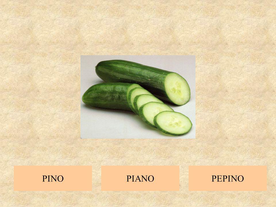 PI A NO piano