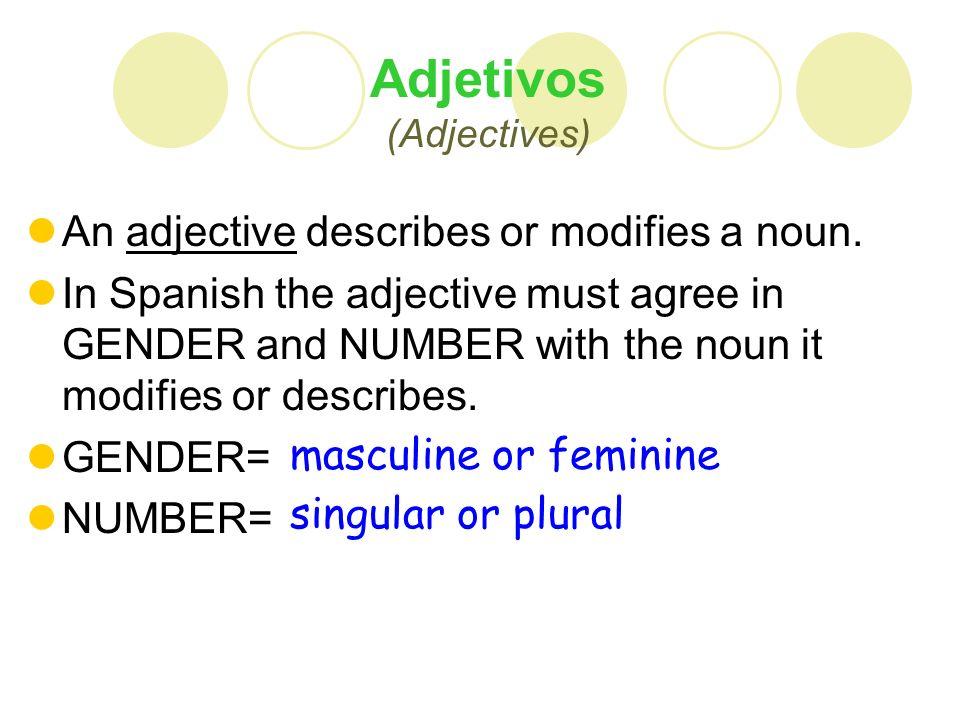 Adjectives that end in –O/-A Singular: 1.El muchacho bajO.