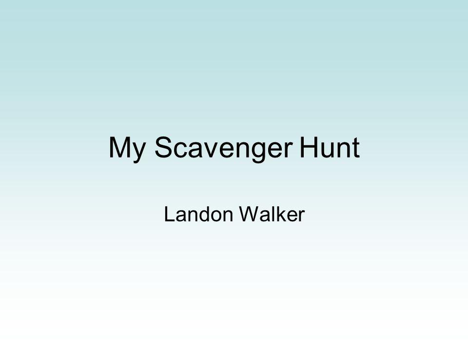 My Scavenger Hunt Landon Walker