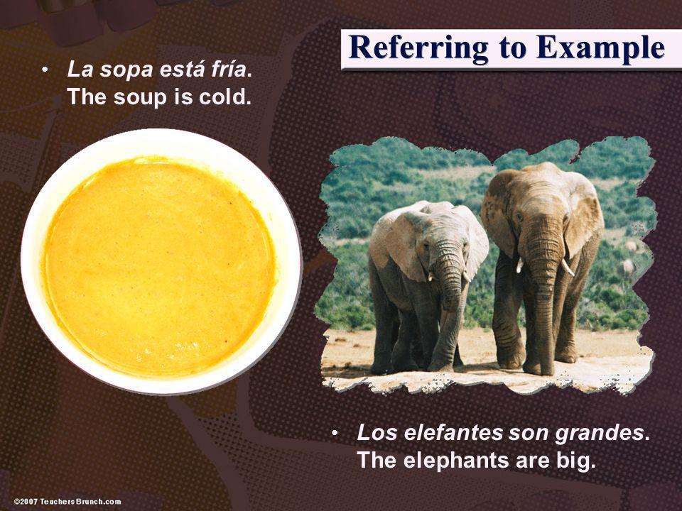 Referring to Example La sopa está fría. The soup is cold. Los elefantes son grandes. The elephants are big.
