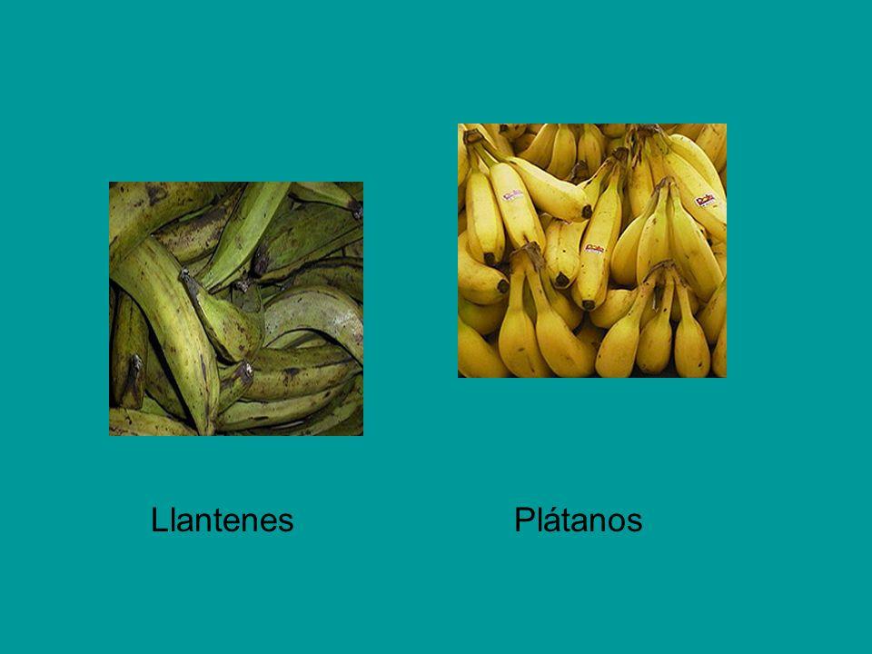 Llantenes Plátanos