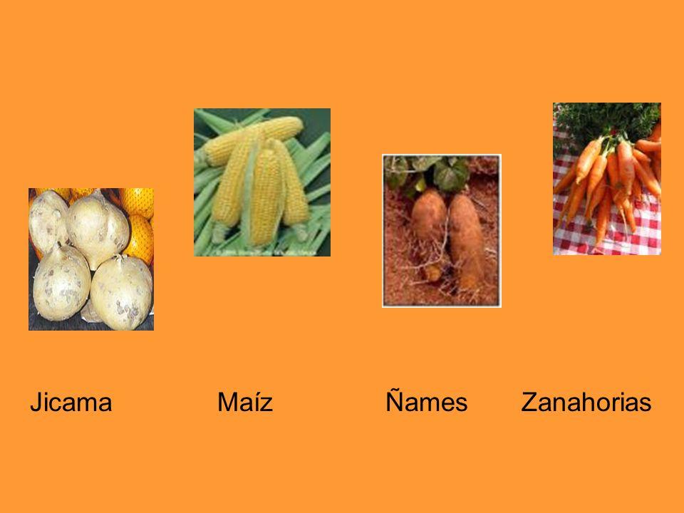 Jicama Maíz Ñames Zanahorias