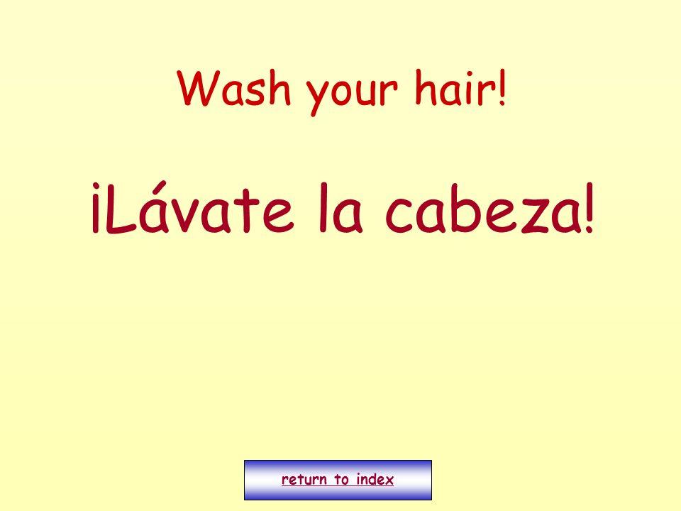 Wash your hair! ¡Lávate la cabeza! return to index