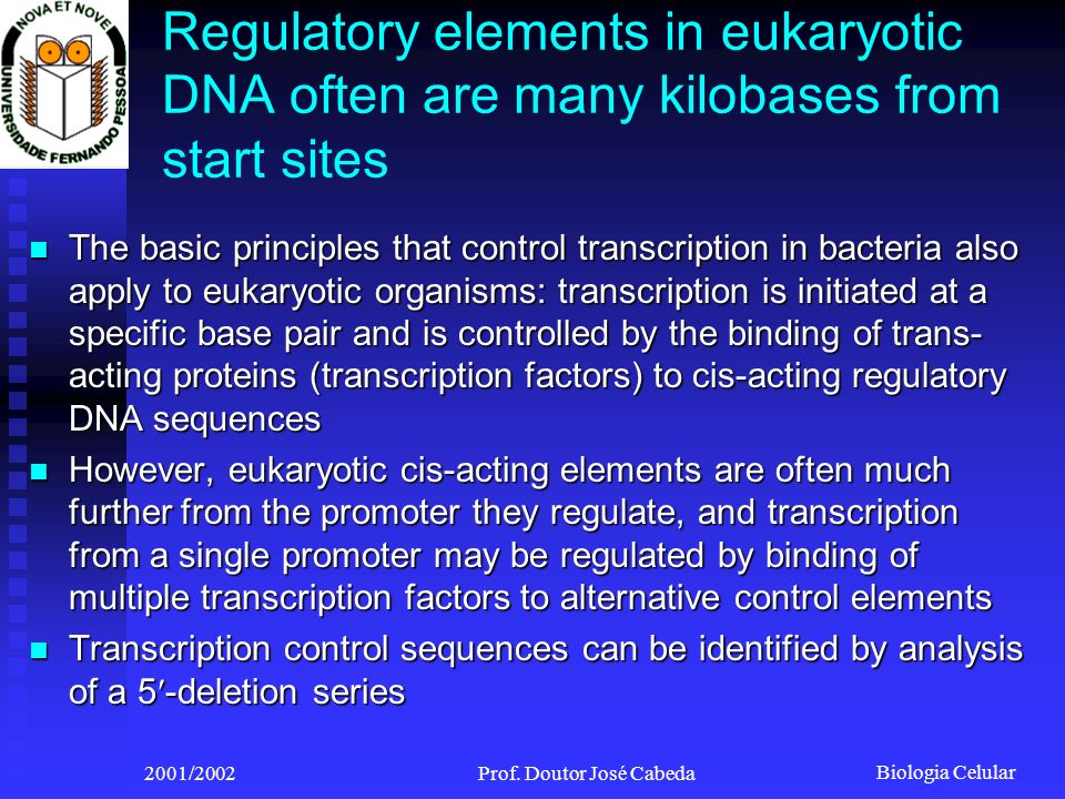 Biologia Celular 2001/2002Prof. Doutor José Cabeda Regulatory elements in eukaryotic DNA often are many kilobases from start sites The basic principle