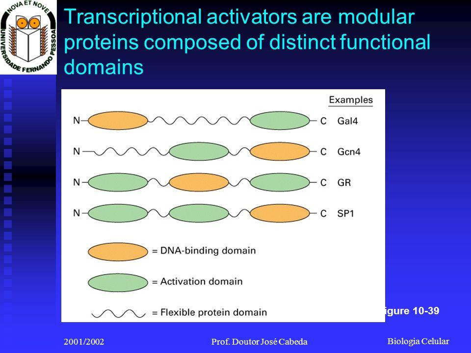 Biologia Celular 2001/2002Prof. Doutor José Cabeda Transcriptional activators are modular proteins composed of distinct functional domains Figure 10-3