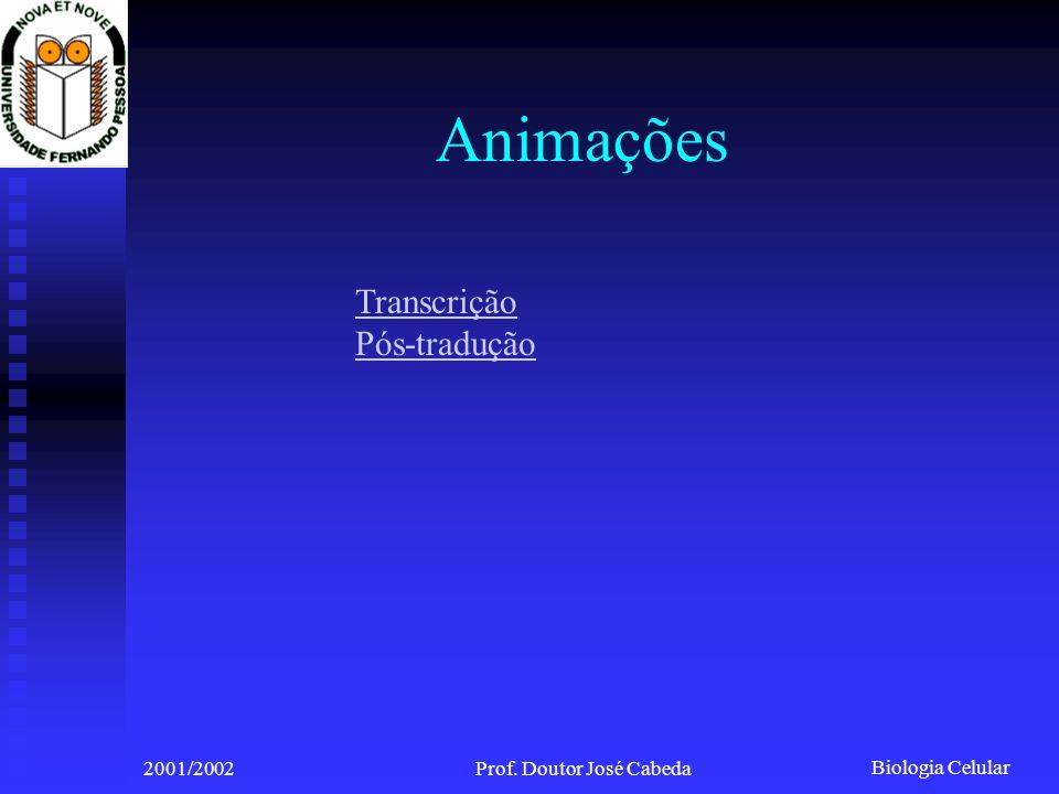 Biologia Celular 2001/2002Prof. Doutor José Cabeda Animações Transcrição Pós-tradução