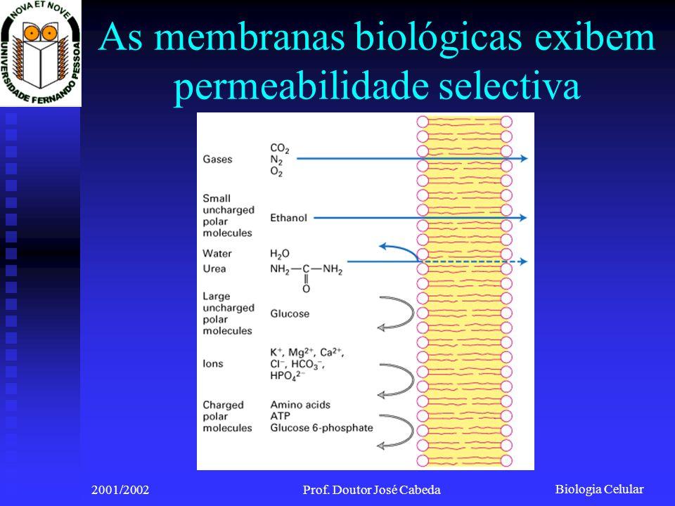 Biologia Celular 2001/2002Prof. Doutor José Cabeda As membranas biológicas exibem permeabilidade selectiva