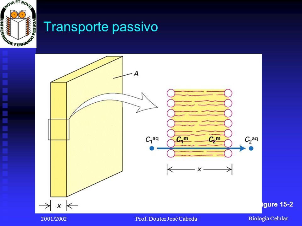 Biologia Celular 2001/2002Prof. Doutor José Cabeda Transporte passivo Figure 15-2