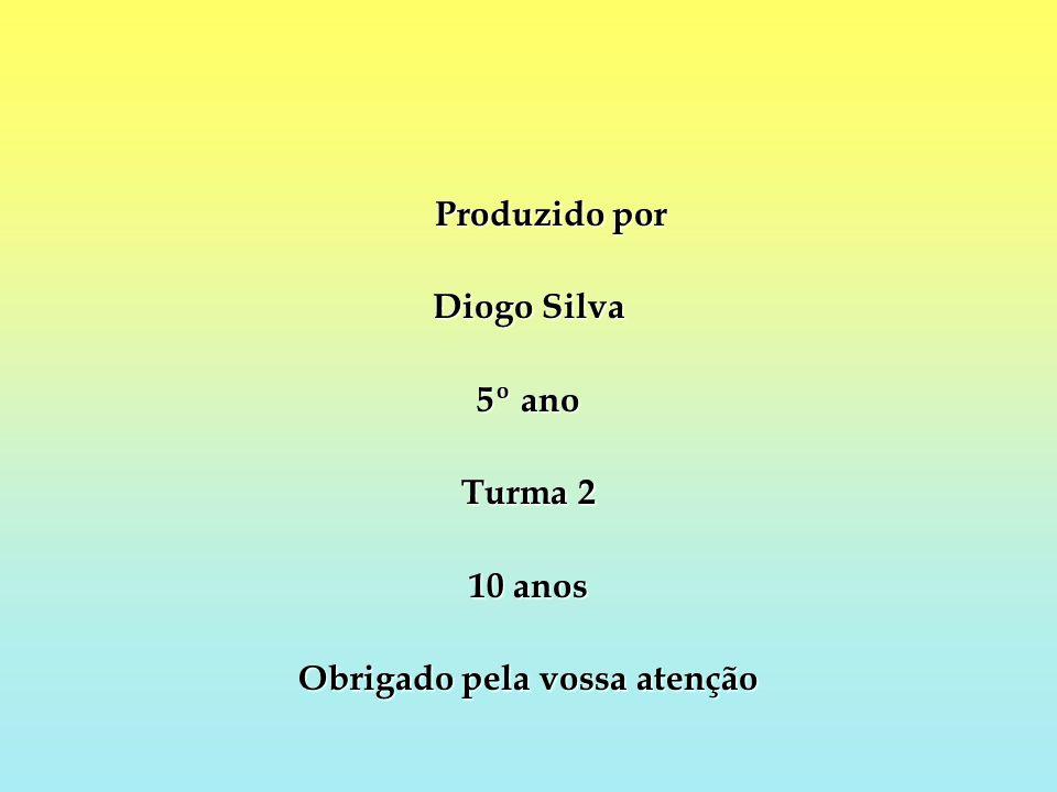 Produzido por Diogo Silva 5º ano Turma 2 10 anos Obrigado pela vossa atenção