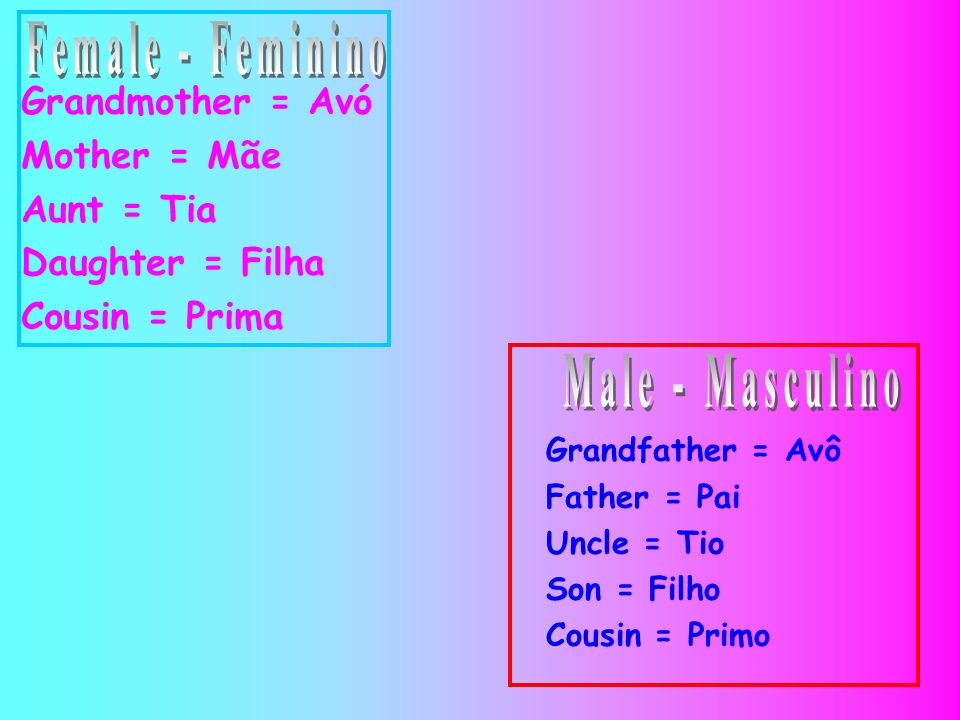 Grandmother = Avó Mother = Mãe Aunt = Tia Daughter = Filha Cousin = Prima Grandfather = Avô Father = Pai Uncle = Tio Son = Filho Cousin = Primo