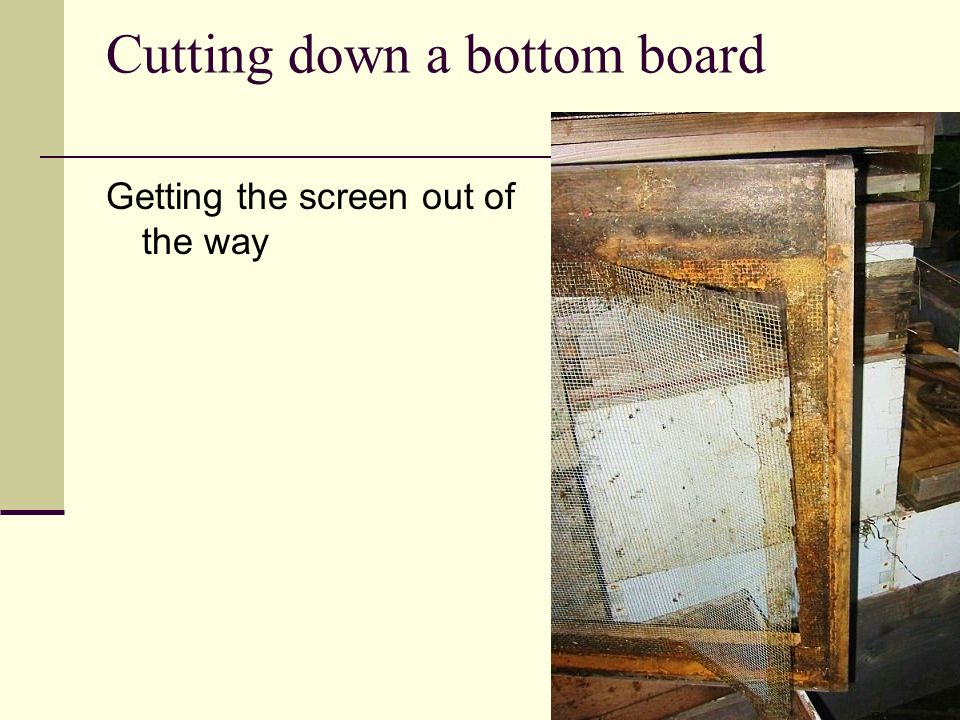 Cutting down a bottom board Getting the screen out of the way